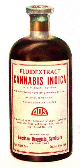 Cannabis_Indica