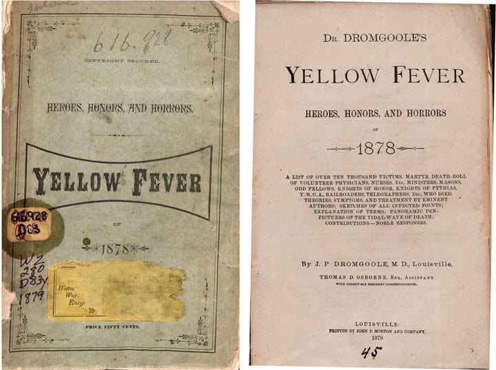yellow fever 1793 Students are drawn into post-‐revolutionary philadelphia during the midst of the  infamous yellow fever epidemic of 1793 by reading laurie halse anderson's.