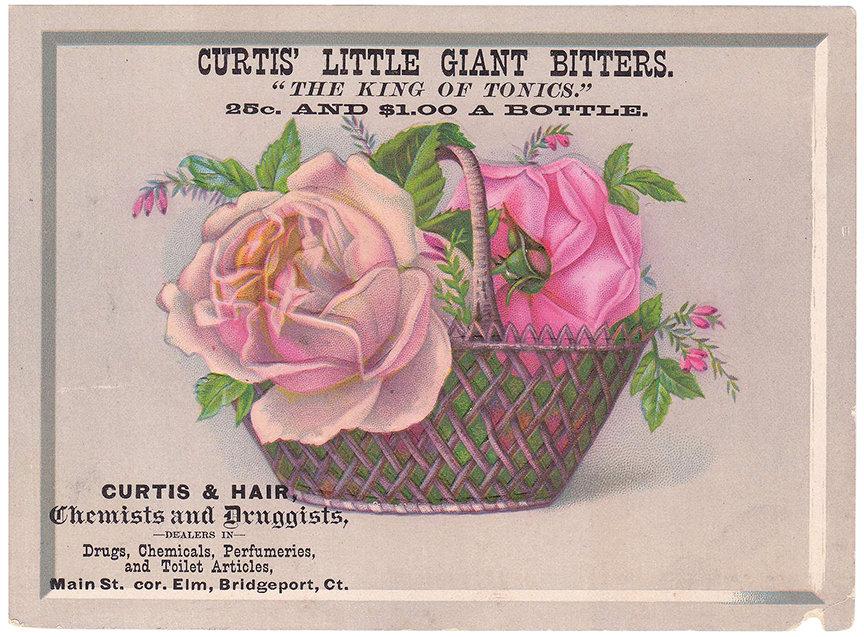 CurtissLittleGiant2_Gourd