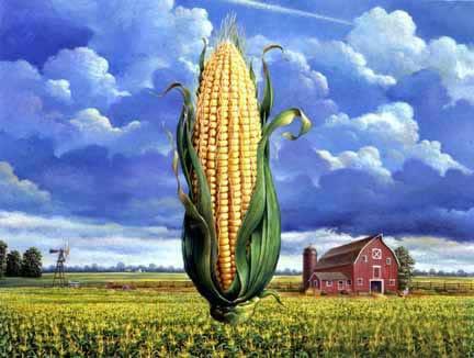 Corn Field Art
