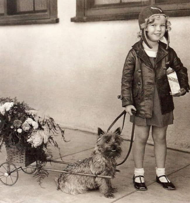 shirley-temple-with-dog