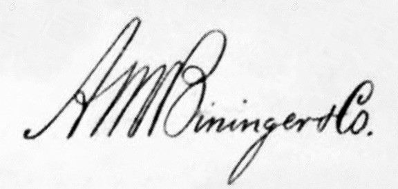 AM_BiningerSignature
