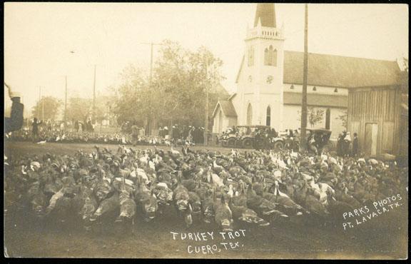 turkey-trot-3