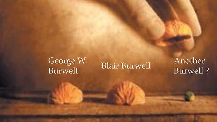 BurwellShellArt