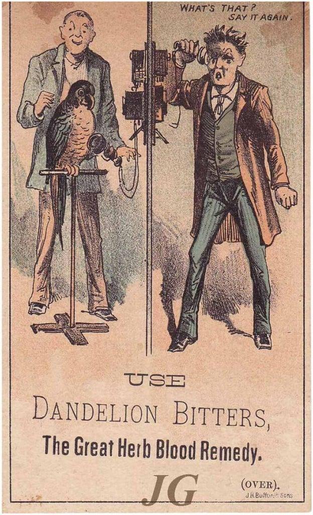 D10.5 Dandelion 2