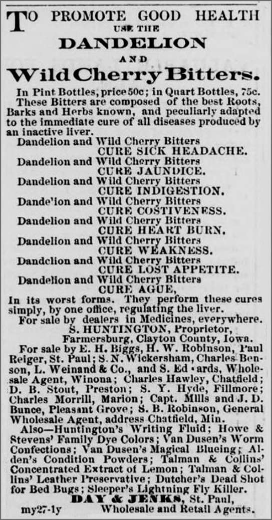 DWCB_StPaulDailyExpress_June6_1863