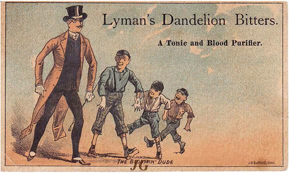 L138 Lyman's Dandelion Bitters Dude 4_s