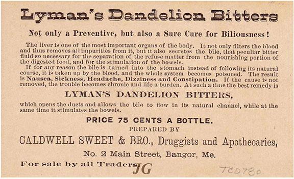 L138 Lyman's Dandelion Bitters Dude back_s