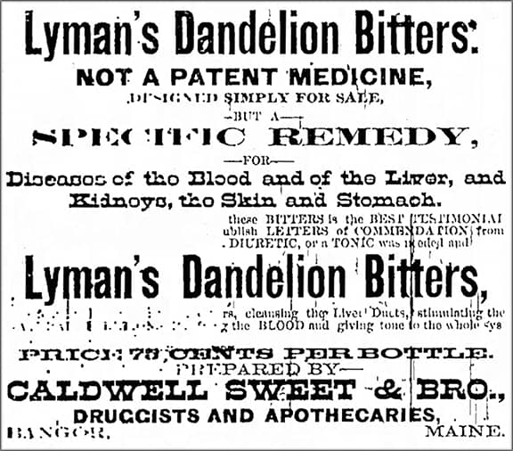 Lymans_Bangor_Daily_Whig_and_Courier_Mon__Apr_21__1884_