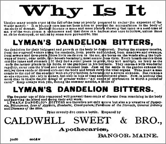 Lymans_Bangor_Daily_Whig_and_Courier_Mon__Jul_9__1883_