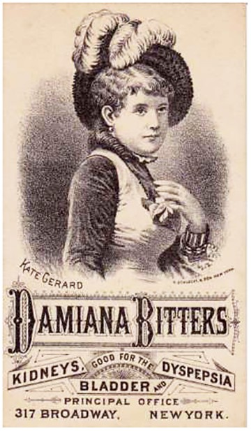 damianabitters_kate-gerard