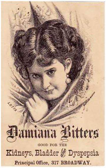 damianabitters_lotta